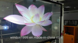 3m Holographic Rear Projection Film, Window Film per Shop