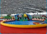 Inflatable gigante Water Slide con Pool