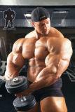 Poudres de stéroïdes brutes efficaces Stanozol Winstrol Cycle Steroid Tablets 10418-03-8