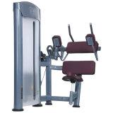 De buik Machine van de Gymnastiek voor Verkoop
