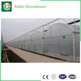 Парник пленки кислотного дождя горячего сбывания китайский анти- пластичный поли с высоким качеством