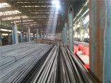 Vendita calda 2015! ! ! barra ad alta resistenza B500b di /Deformed del filo di acciaio della nervatura di spirale di concentrazione di 10mm