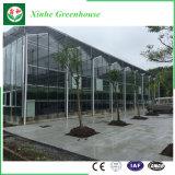 Парник экономичного трактира стеклянный с структурой Glavanized стальной