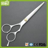 Холить любимчика Scissor, выслеживает продукты (HN-PG286)