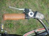 カスタマイズされた電気自転車のブランドの最高と評価された電気バイク