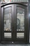 Горячая продавая коммерчески передняя дверь ковки чугуна