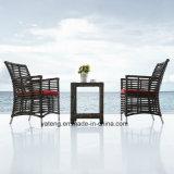 Glassic普及したデザイン6-8人によって表が付いている椅子を(YT620)食事する全天候用屋外の庭の家具