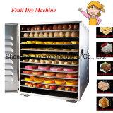La fábrica Industrial de suministro de máquina de secado de frutas para el secado de frutas