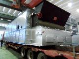 La grille de la chaîne de la série Dzl Stoker la Biomasse Charbon Chaudière à vapeur de carburant avec une haute qualité