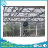 La pendaison de serre le ventilateur de circulation /serre le ventilateur de circulation de l'air