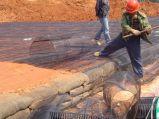 私道または堤防のためのPP /PE材料とのUnidirection Geogird