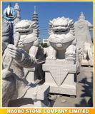 중국 후견인 사자 아시아 사람 작풍