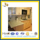 Nieuwe Venetiaanse Gouden Countertop van de Steen voor Keuken, Barth (yql-CT0025)