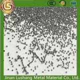 0.6 millimètre/matériau normal national résistant à l'usure de la pillule 304 d'acier inoxydable