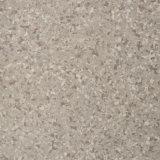 Pavimentazione omogenea del PVC per la barra