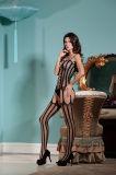 Оптовая торговля высокая эластичность Sexy Женское нижнее бельё Bodystocking BS8810