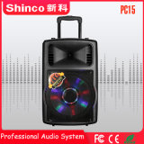 Shinco 건전지를 가진 플라스틱 Portable DJ 스피커 대중적인 15 인치 Bluetooth