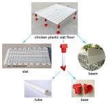 Птицы пластиковые пластины пола цыпленок дом пластиковый настил пола