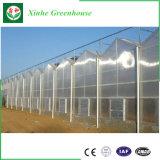 승진 정원 녹색 집 고품질을%s 가진 플라스틱 PC 온실 덮개