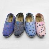 Mejor la venta en América del Sur populares señoras la moda Zapatos de lona