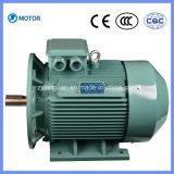 Qualità superiore ampiamente usata un motore elettrico asincrono di 3 fasi