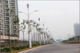 400W Haushaltswindkraftanlage, Windgenerator 400W Haushalt, 400W Haushalts Windmill