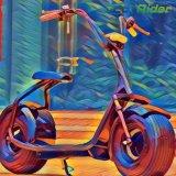 2017 la motocicleta eléctrica más nueva de la vespa 1000W Harley del EEC Citycoco