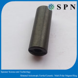 De Magneet van de Ring van het Ferriet van Anisotorpic voor de Motor van gelijkstroom