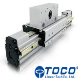 CNC 펀칭기를 위한 선형 모듈의 다른 크기를 주문을 받아서 만드십시오