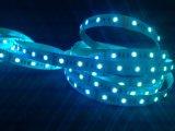 Heißer Verkäufer RGBW SMD5050 5 in 1 Streifen des Digital-Neonflexled