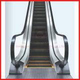 Innen-/im Freien allgemeine ökonomische Hochleistungsrolltreppe