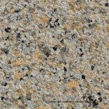 Effet de granit de liquide de texture des pierres de granite de peinture en aérosol pour mur extérieur