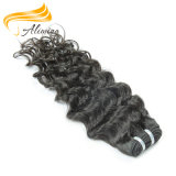 Weave de trama indiano do cabelo humano de Remy do cabelo humano de qualidade superior