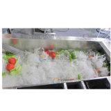 Linea di produzione di lavaggio di verdure della macchina di pulizia dell'alimento automatico rondella