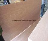Núcleo de madera de eucalipto/madera contrachapada de buena calidad para muebles