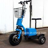 3 zenzero facente un giro turistico del Ce del veicolo 500W di mobilità elettrica del motociclo delle rotelle