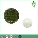 工場供給のツルの茶エキスDihydromyricetin 50%~98%
