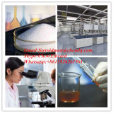 Traitement normal de GMP de l'acide Chenodeoxycholic pharmaceutique CAS 474-25-9 de matières premières de calculs biliaires