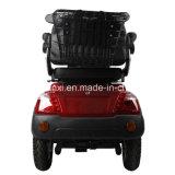 Un motorino delle 3 rotelle per il Elder