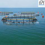 Circulaire d'aquiculture cultivant des cages de pêche