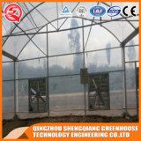 Serre chaude en aluminium de plastique de profil de bâti en acier d'agriculture