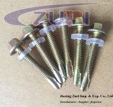 Hexagon-Unterlegscheibe/Flansch-bohrende Hauptschrauben mit Plastikstahlunterlegscheibe