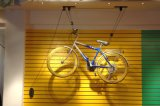 Espaço que conserva o elevador interno da bicicleta do teto do armazenamento da bicicleta