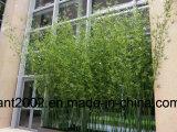 屋内装飾のための工場卸し売り擬似タケ木Hx010501