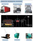 Dzl4-1.25-Aii 4ton / H Consommation de carburant peu coûteuse à faible consommation de carburant Chaudière à charbon