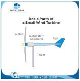 200W 12V/24Vの水平の軸線Pmgの風発電機の小さい風力