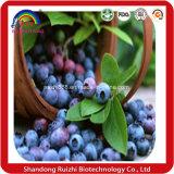O pó da uva-do-monte pode ser feito do Sell quente do grânulo