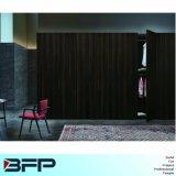 Klassische Garderoben-Schrank-Ausgangsmöbel