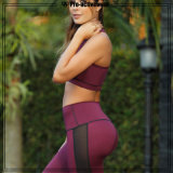 A ginástica do desgaste da aptidão das mulheres da alta qualidade veste calças da ioga