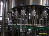 Cgn 시리즈 애완 동물 병에 있는 자동적인 음료 충전물 기계